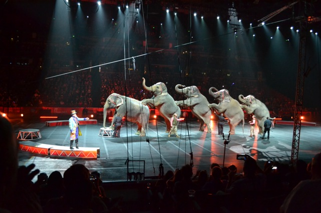 Ringling-Brothers-Circus-30