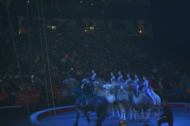 Ringling-Brothers-Circus-37