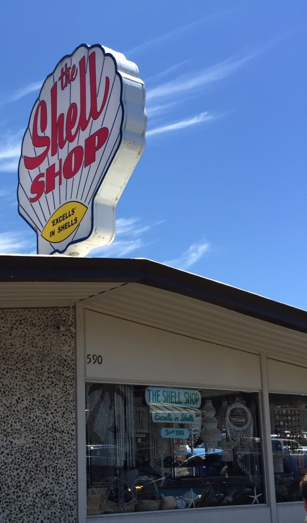 The Shell Shop in Morro Bay