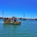 Exploring Morro Bay with Sub Sea Tours