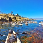 Exploring La Jolla Sea Caves with Everyday California