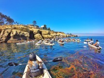 Exploring La Jolla Sea Caves With Everyday California Oc