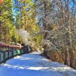 Winter Magic at the Yosemite Mountain Sugar Pine Railroad
