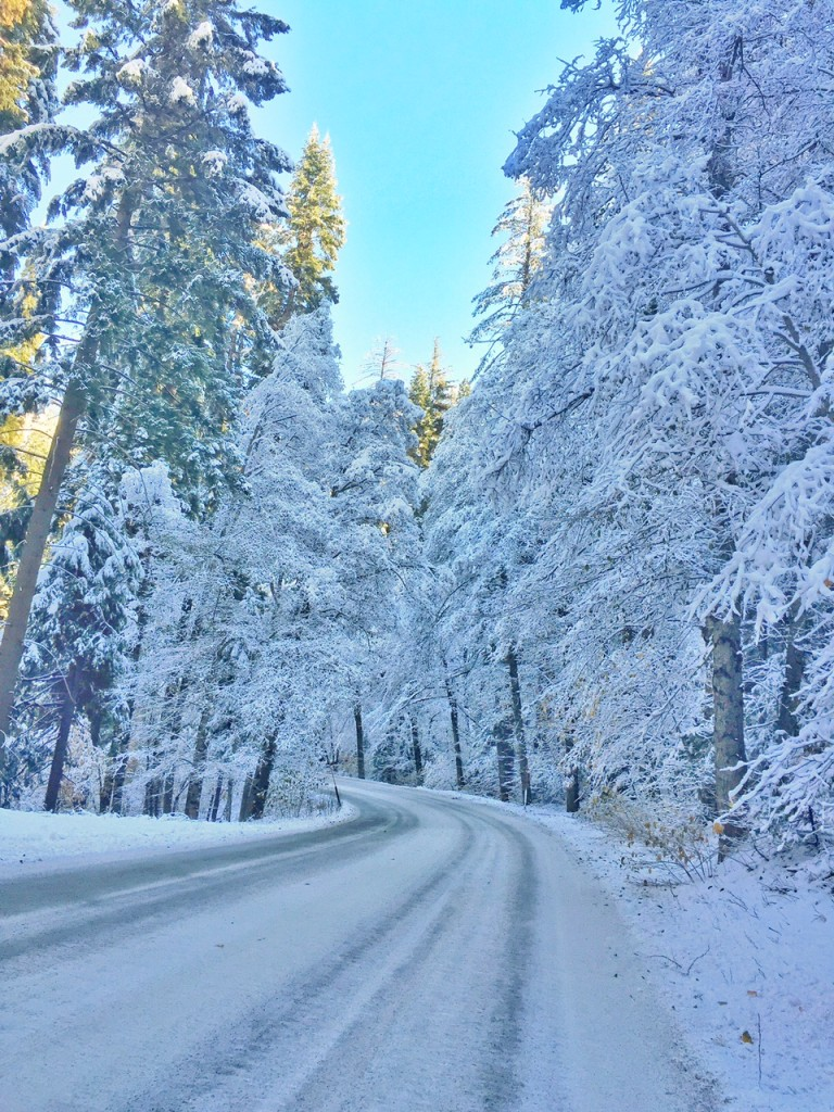 Winter Wonderland in Yosemite