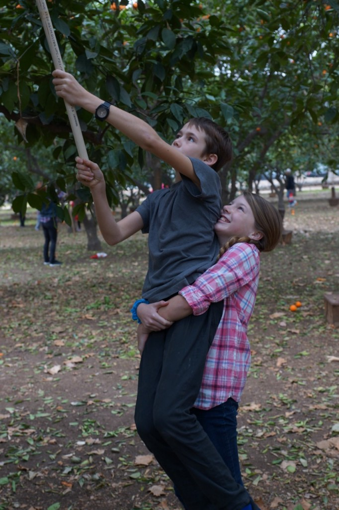 Brother helping sister pick oranges