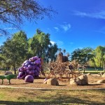 Epic Grape Day Park in Escondido