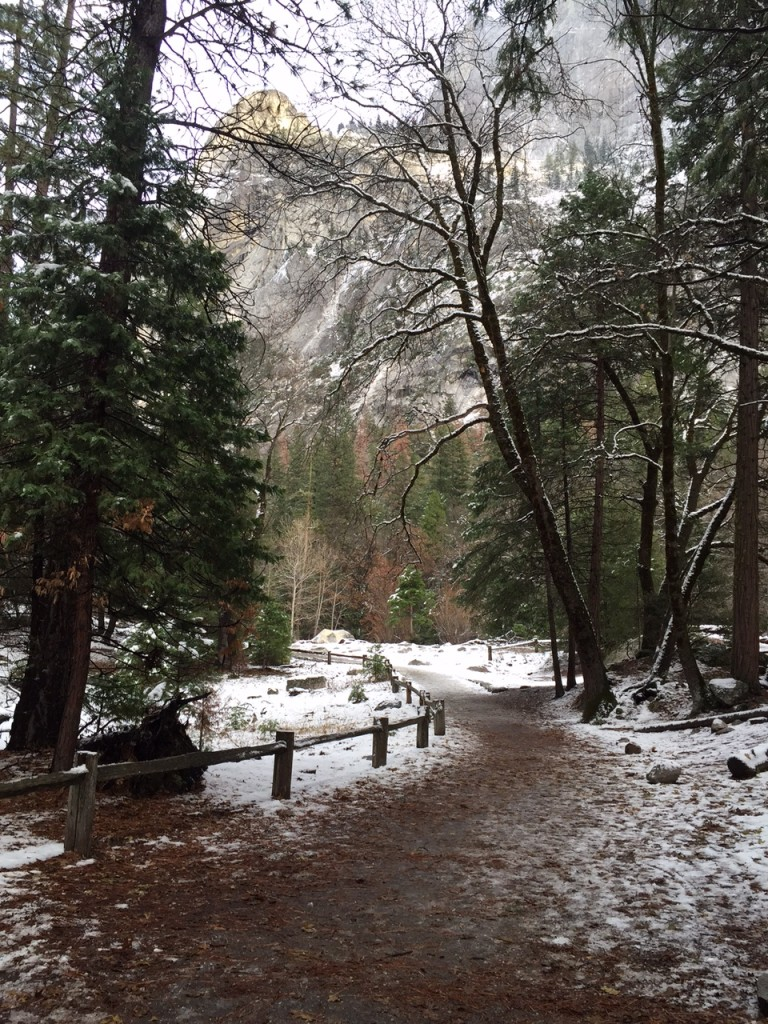 Hiking Trail to Mirror Lake