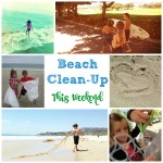 Join us for a Huntington Beach Clean-Up