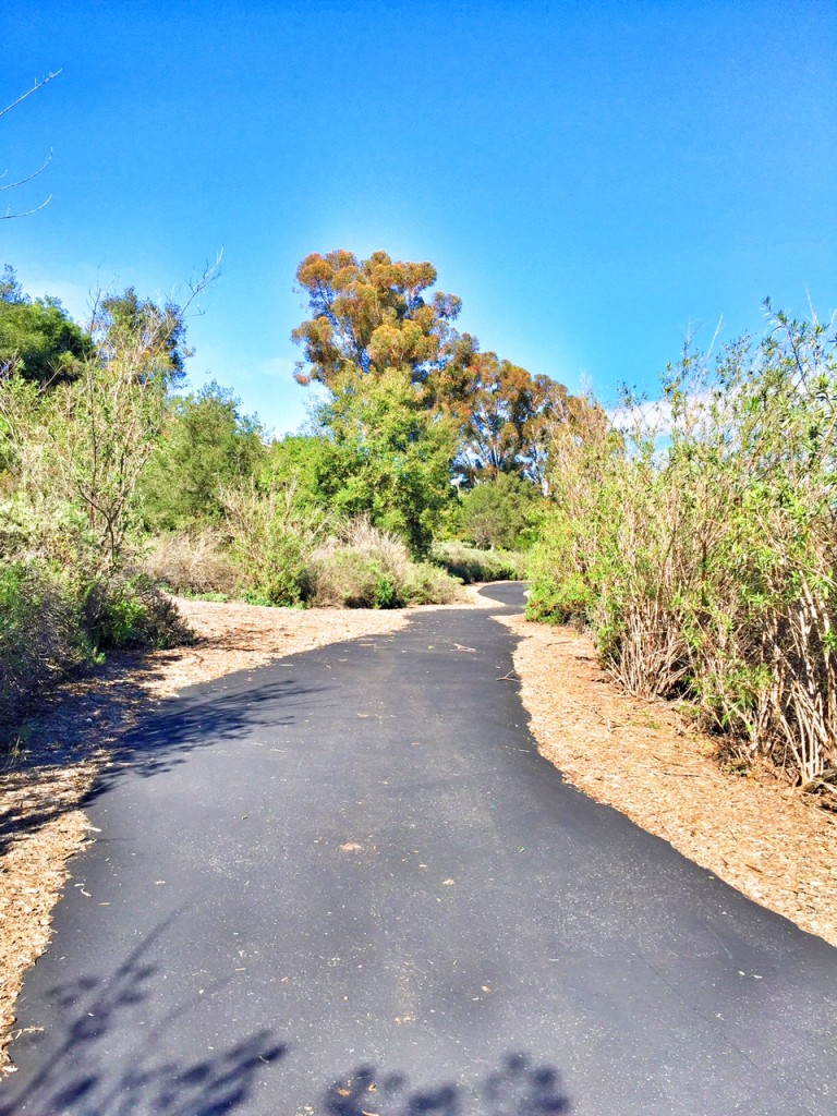 Family hiking trail in orange county