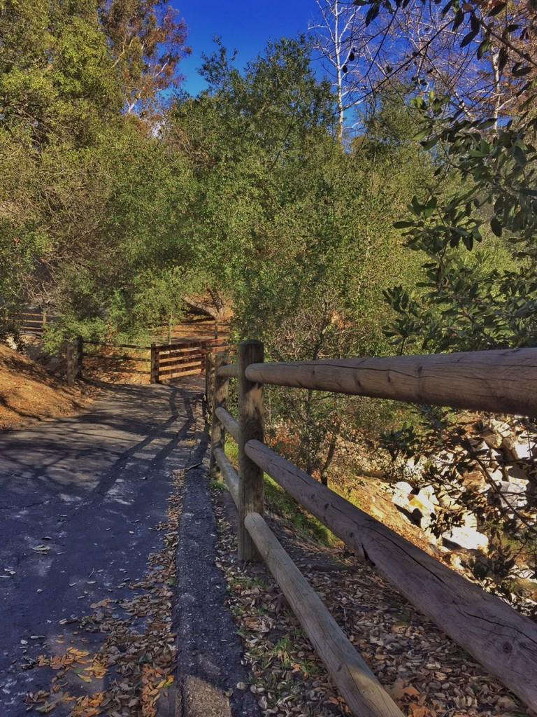Nature Hike in Mission Viejo