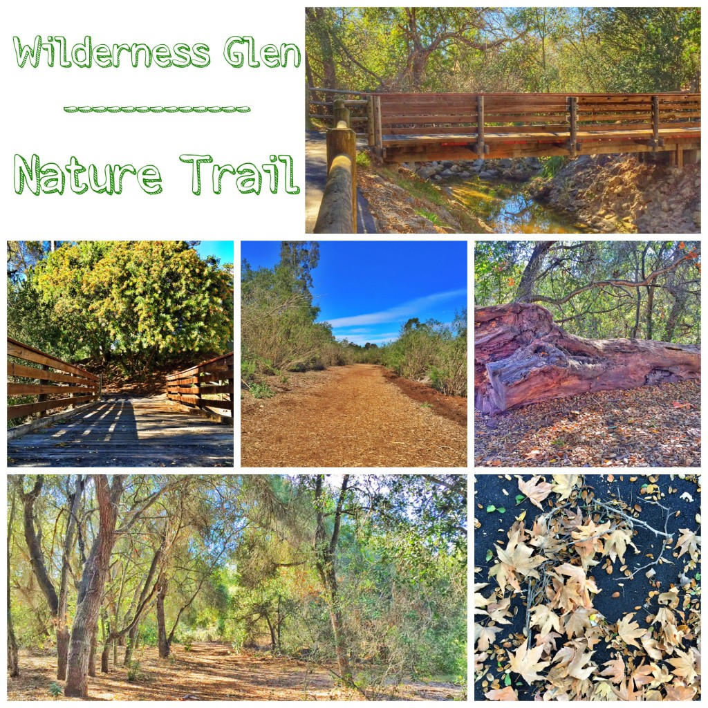 Wilderness Glen Nature Trail