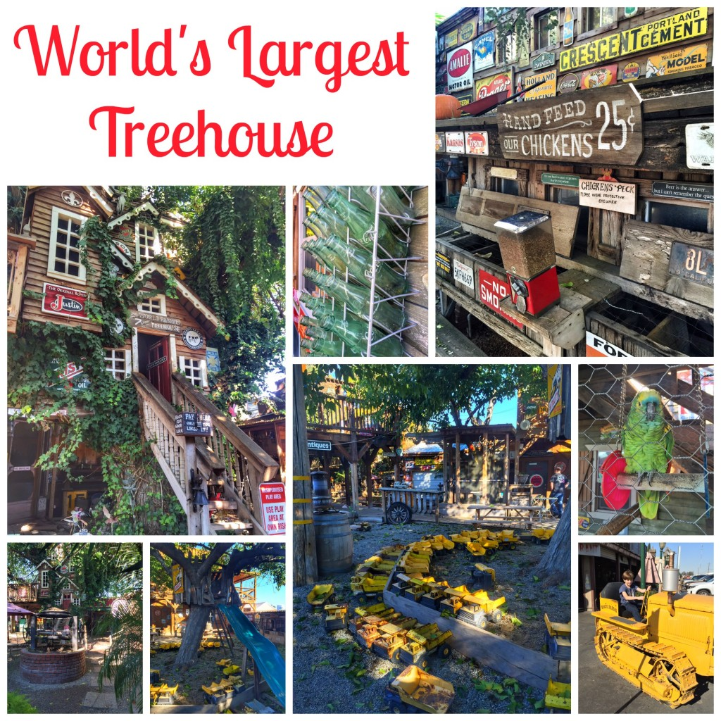 Biggest Treehouse In The World the world's largest treehouse at bravo farms | oc mom blog