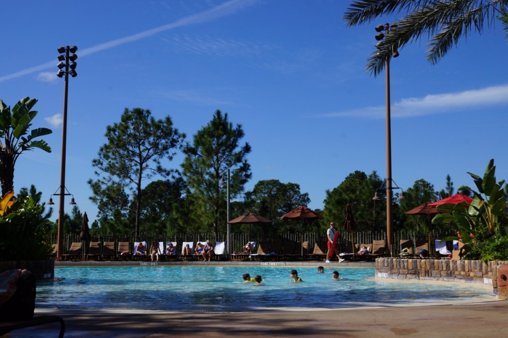 animal kingdom family pool
