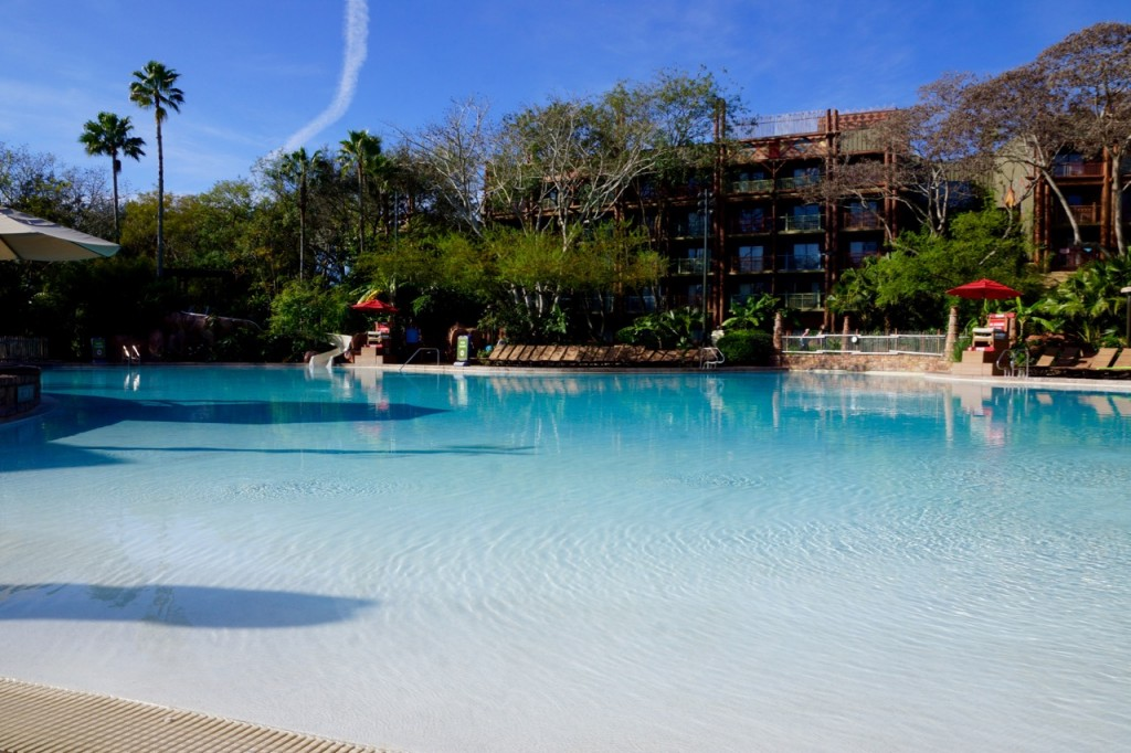 animal kingdom pool