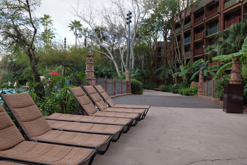 pool lounge chairs at animal kingdom