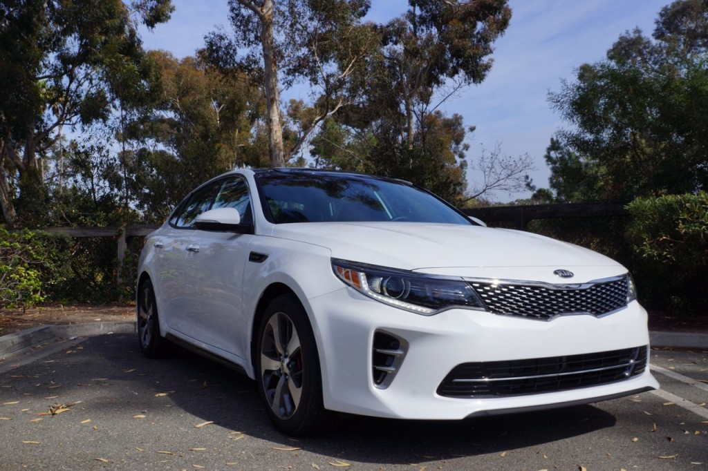 Kia optima in the woods