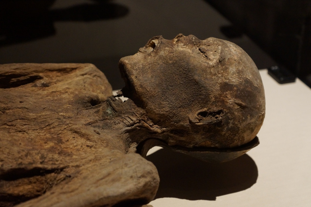 a preserved person