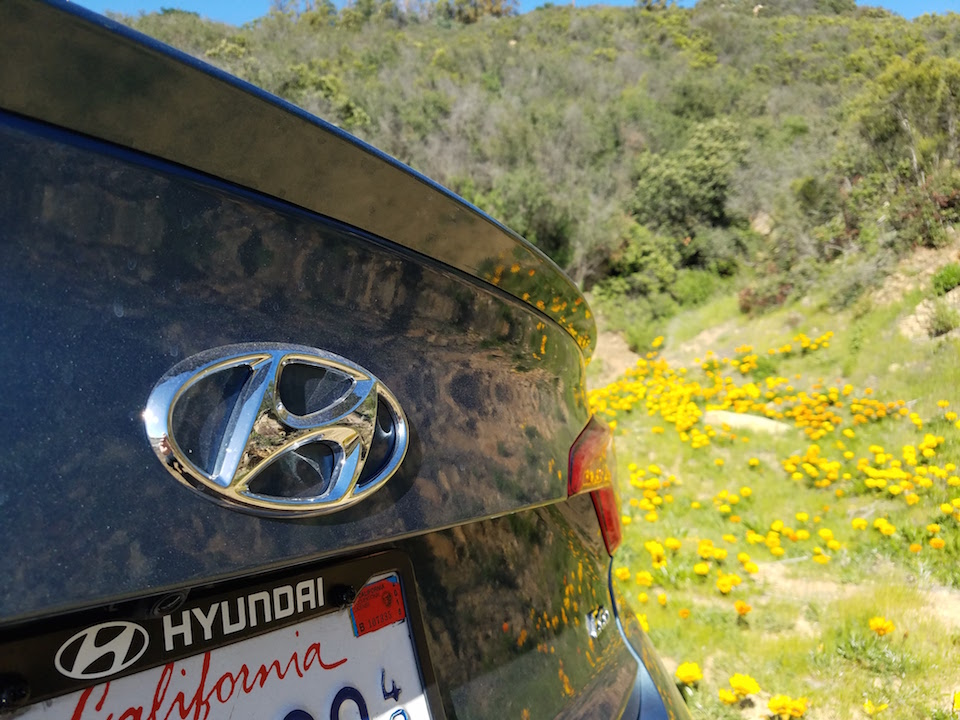 Flowers and Hyundai
