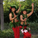 Aquarium's 14th annual Pacific Islander Festival