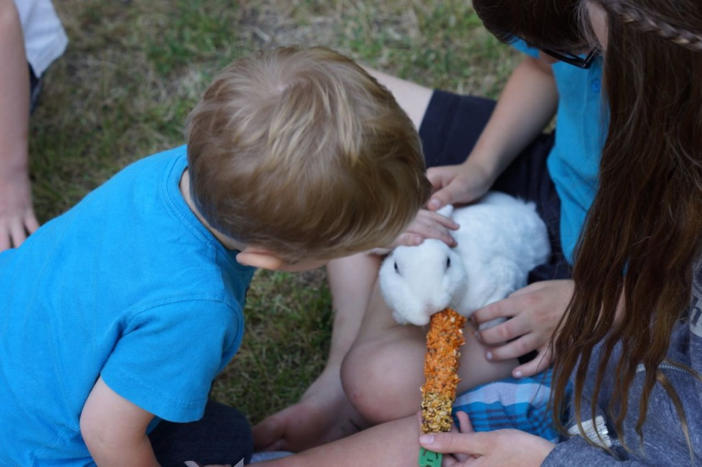 kids playing with a bunny