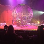 Epic Animal-Free Family Fun Circus