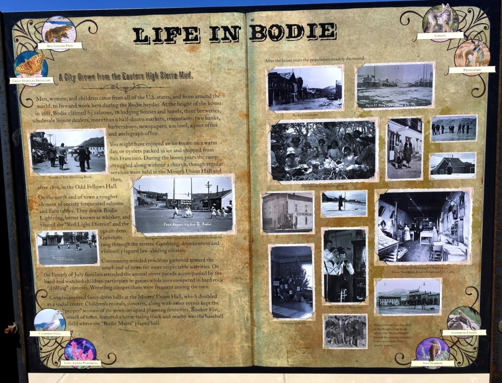 Life in Bodie