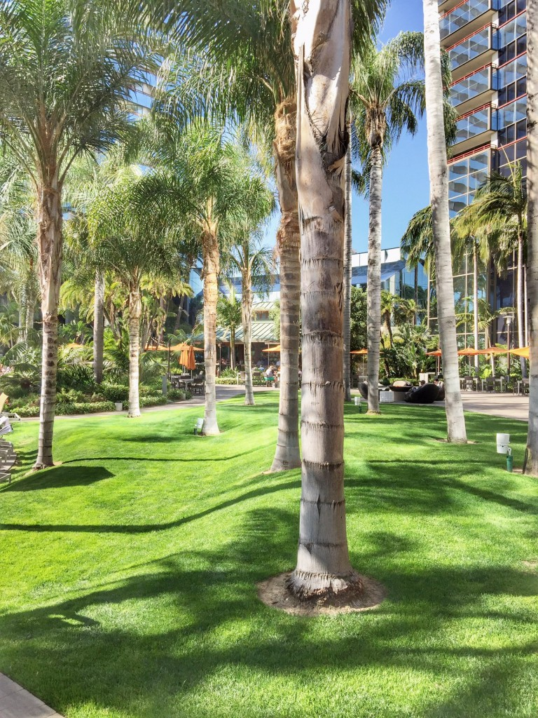 Lush Landscaping at Marriott Marquis San Diego Marina