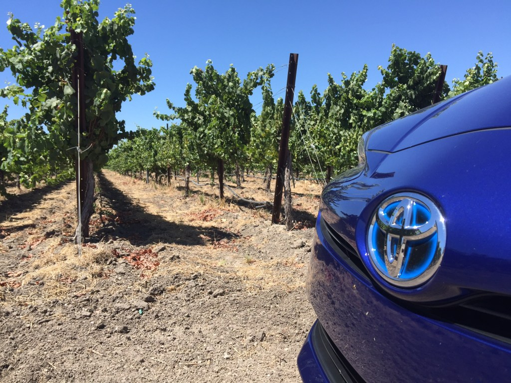 2016 Prius in the vineyard