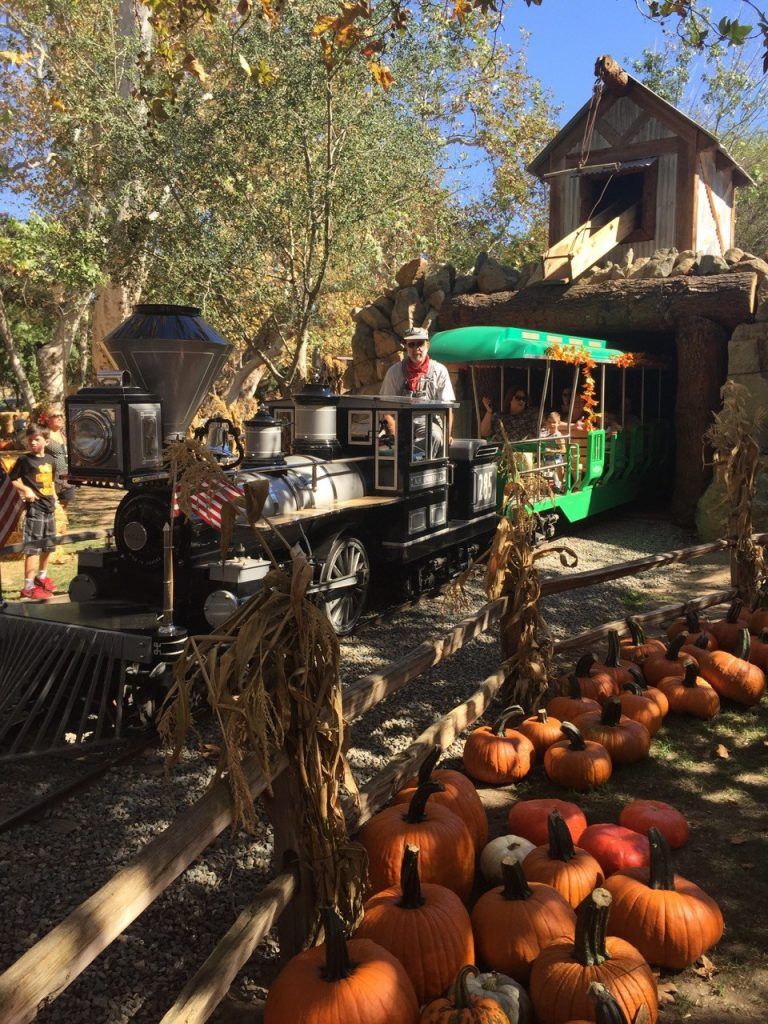 Train Ride at the Irvine Park Railroad Pumpkin Patch
