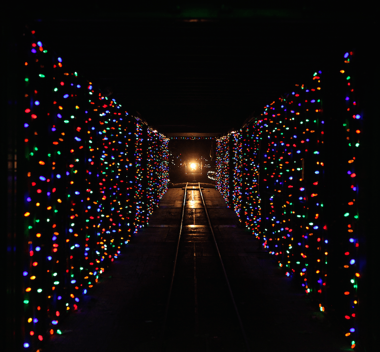 train-in-the-tunnel-of-lights