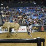 Bull Riding Family Fun