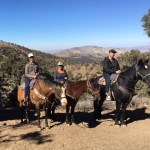 Big Bear Horseback Riding