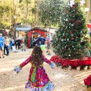 The Magical of the Holidays at the Sawdust Festival