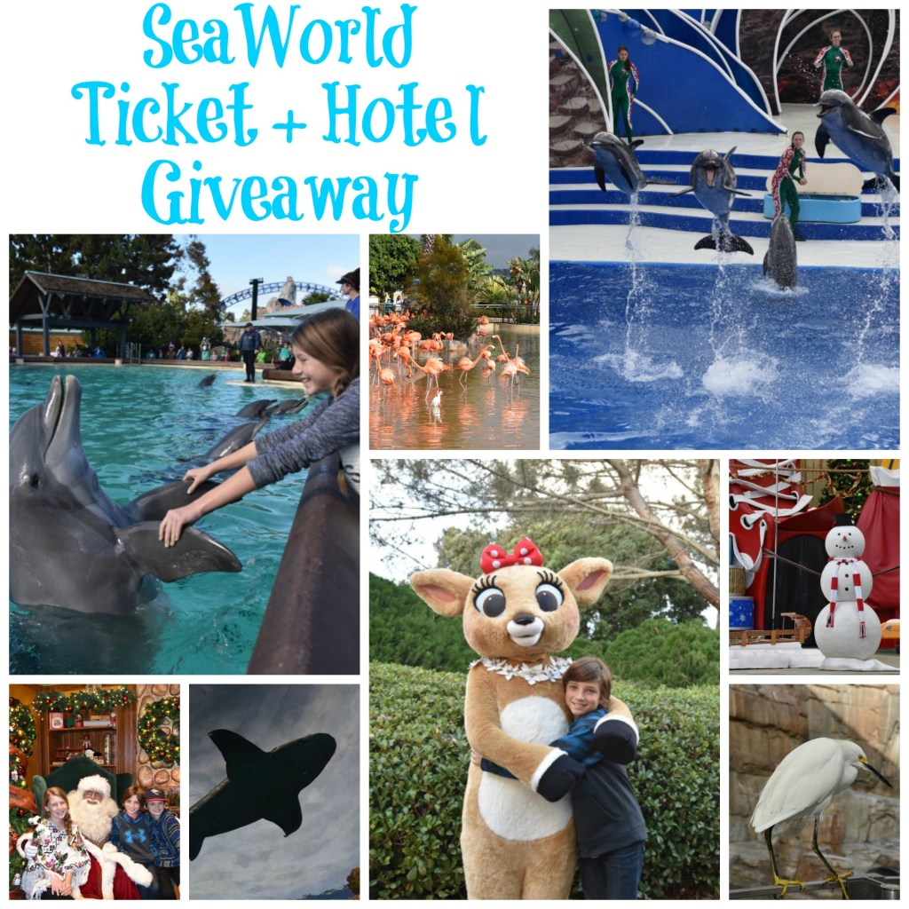 seaworld-ticket-and-hotel-giveaway