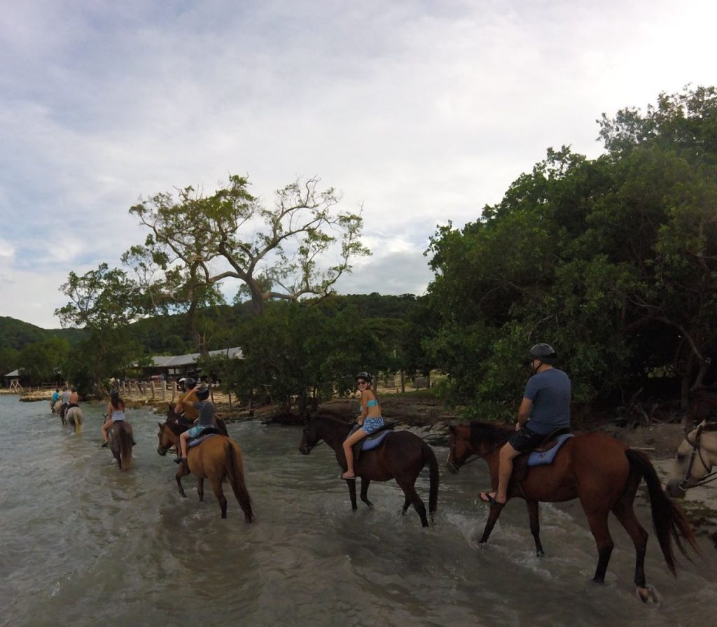 Horseback riding tour in Jamaica