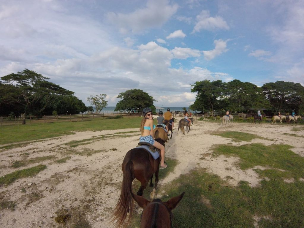 Riding horses in Jamaica