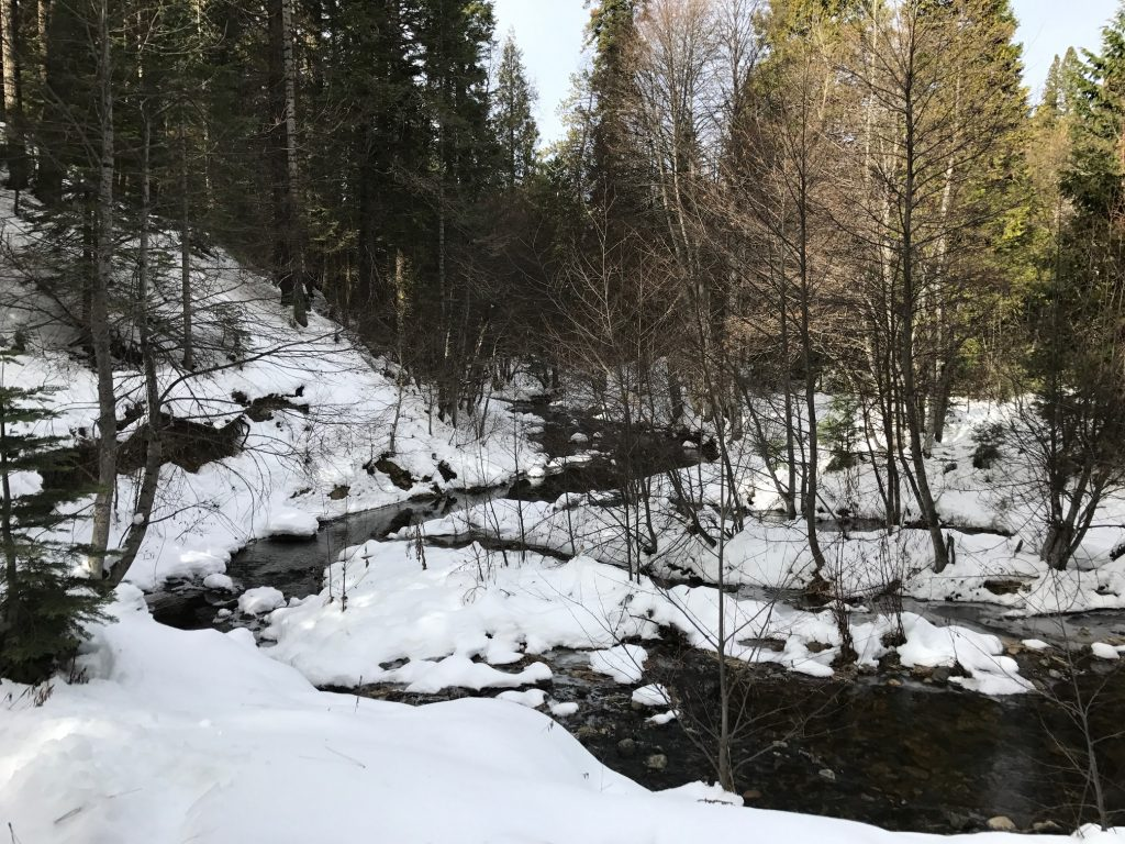 Winter hikes in Yosemite