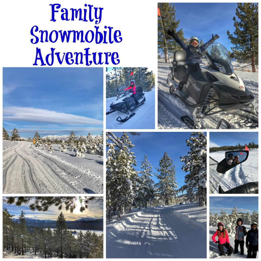 Family Snowmobile Adventure in Mammoth Lakes