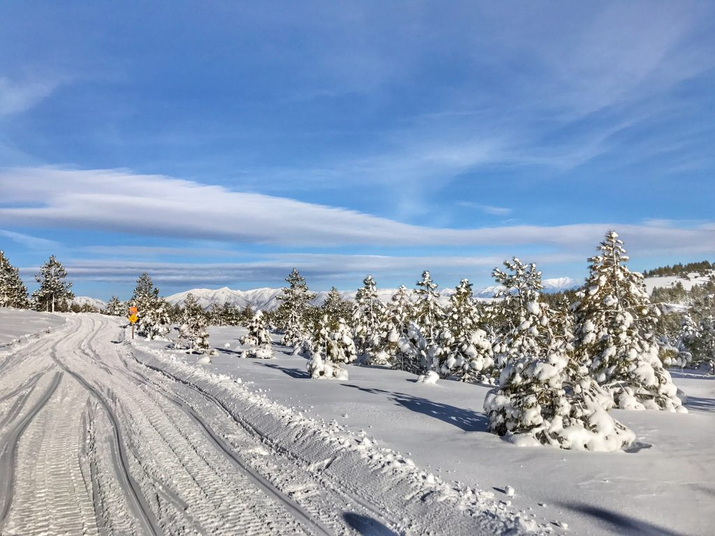 Snowmobile Trail in Mammoth