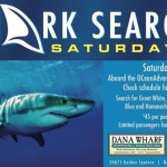 Dana Wharf Shark Searching Saturdays