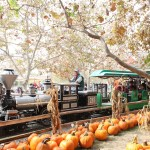Irvine Park Railroad's 12th Annual Pumpkin Patch + Giveaway