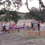 You're Invited: Friendsgiving in the Vineyard