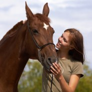 Free Equine Therapy for Victims of Las Vegas Shooting