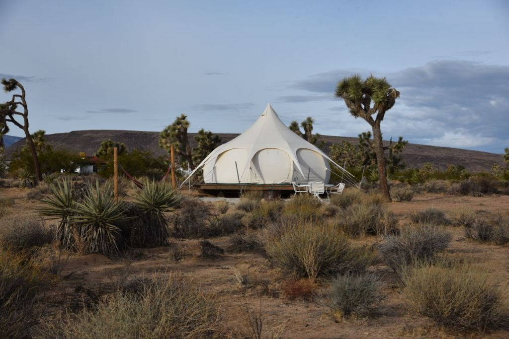 Joshua Tree Campsites
