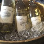 OC Wine Fest – A Day of Wine + Friends