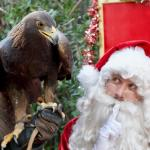 Christmas at The OC Zoo