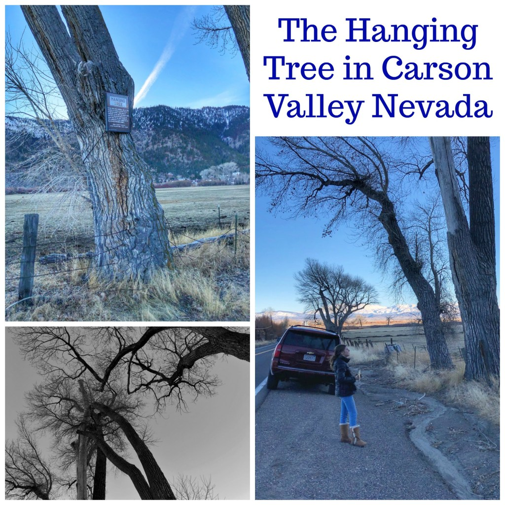 The Hanging Tree in Carson City Nevada