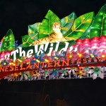Majestic Lights at the The Chinese Lantern Festival