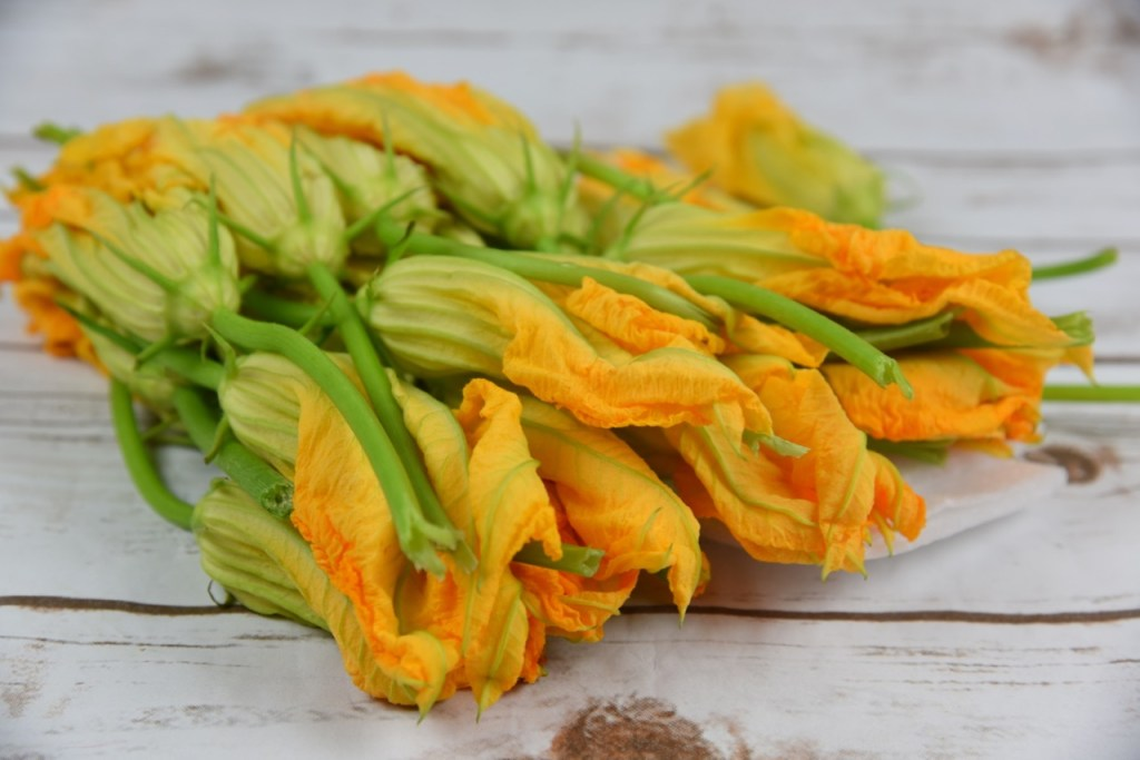 Squash blossoms from Melissa's Produce