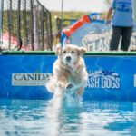 America's Family Pet Expo Returns to OC